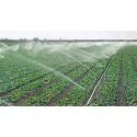 """Aspersor agrícola 1/2"""" sectorial plástico Aspersor de impacto agricola de bajo caudal, rosca macho (Pack de 10 Unidades)"""